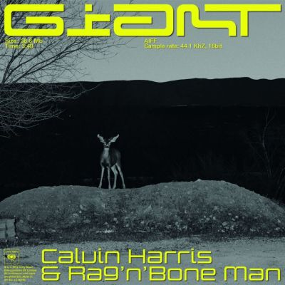 Calvin Harris feat. Rag'N'Bone Man - GIANT